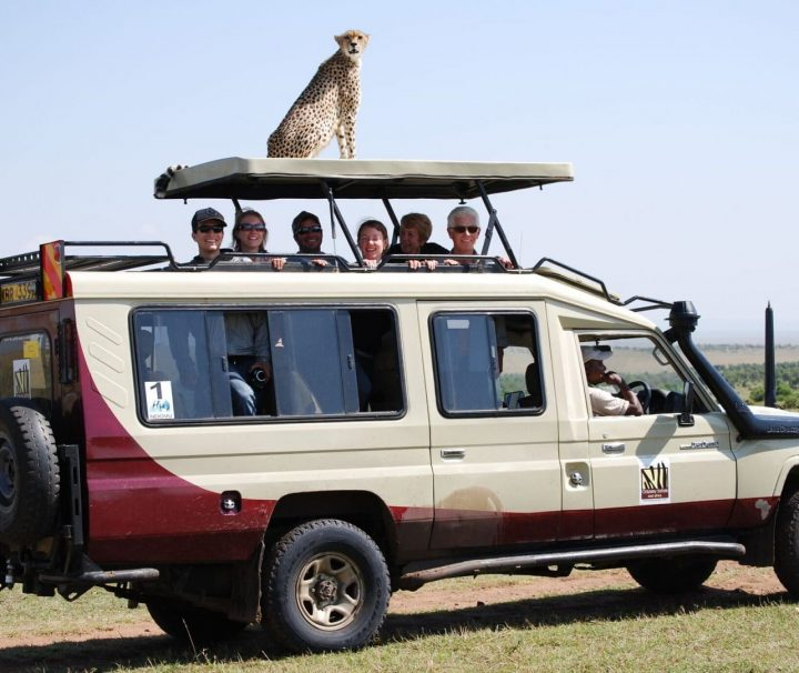 Clients enjoying the Highlight of Kenya Safari