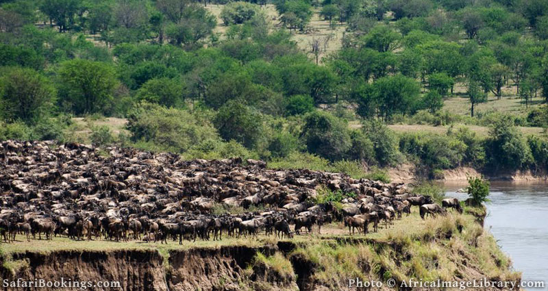 Best Places To Visit In Africa - Serengeti National Park