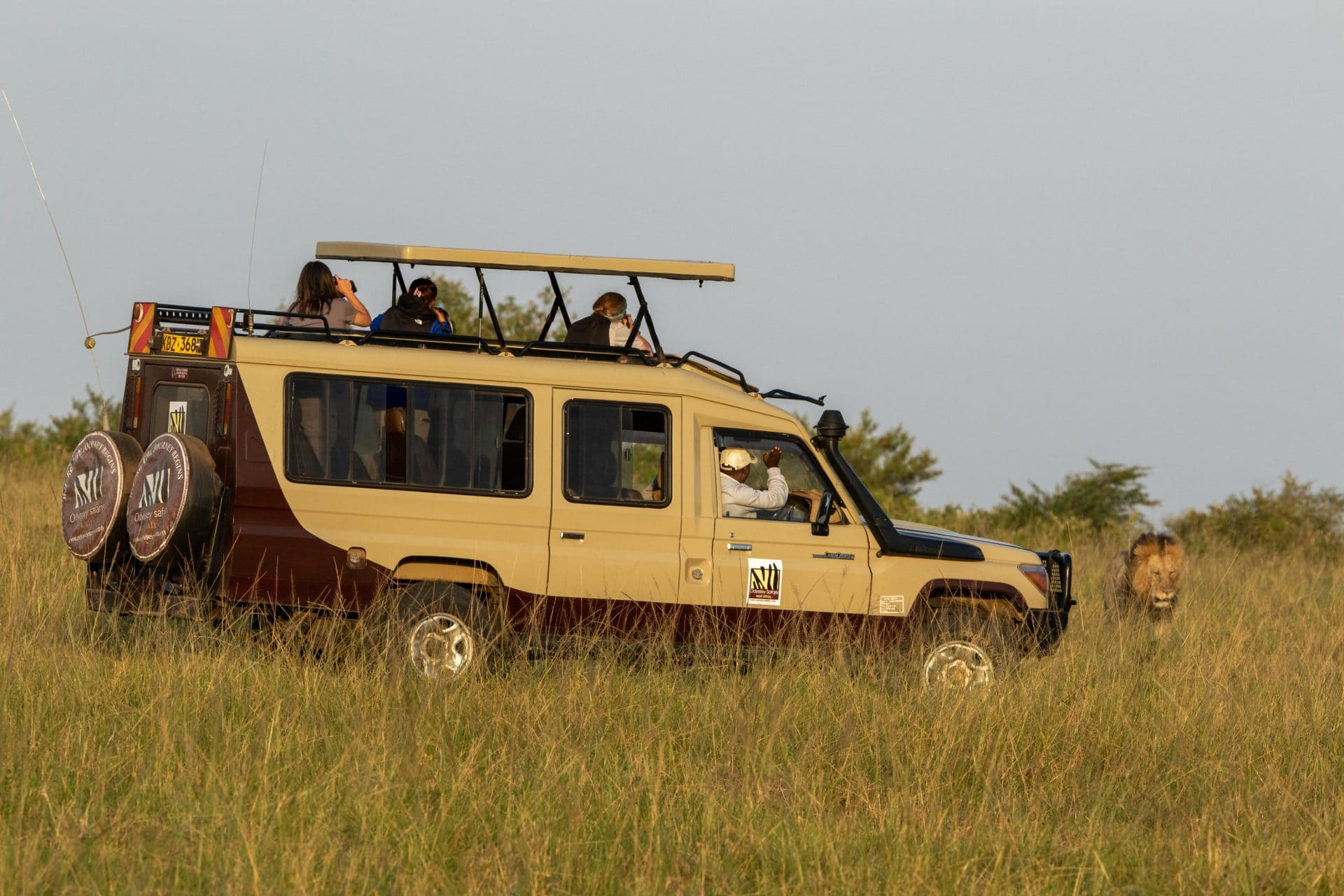 Where Do I Start? The Beginner's Travel Guide To Exploring Tanzania