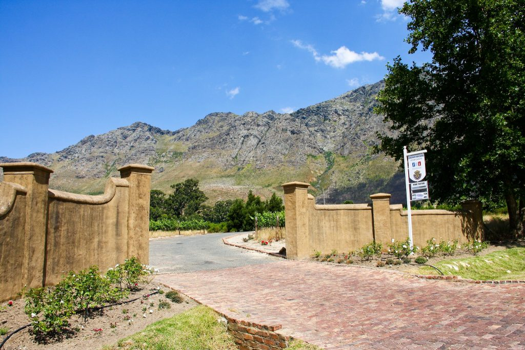 winery in south africa
