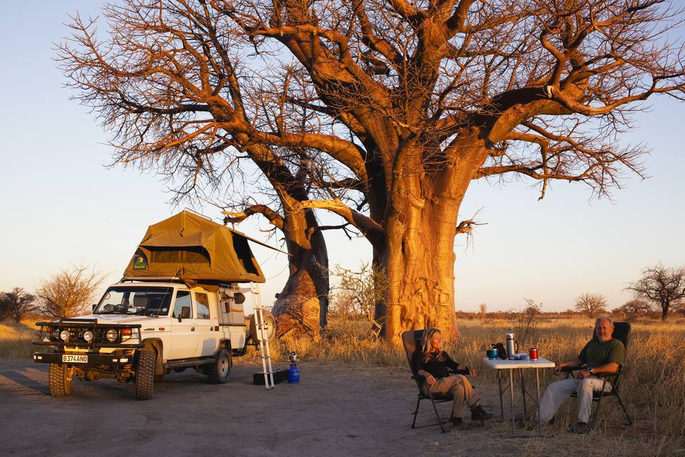 couple camping under a tree