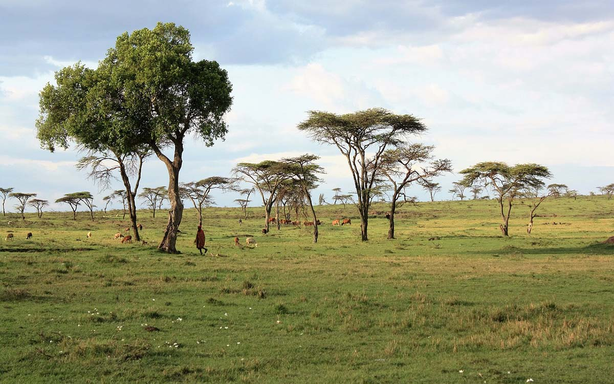 Best Things To Do in Nairobi, Kenya